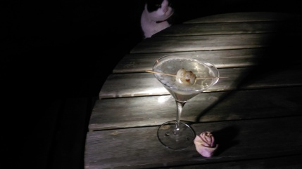 cat and cocktail.jpg