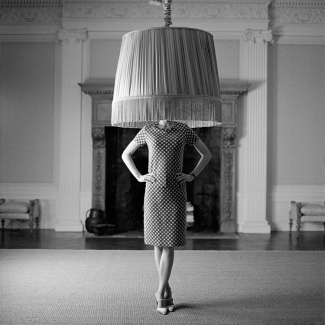 lampshade on head.jpg