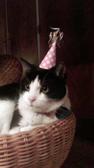cat_in_a_hat1