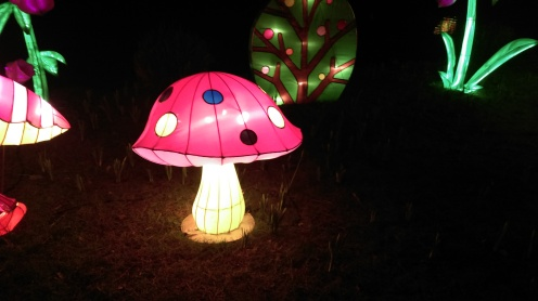 magic_lantern_festival15