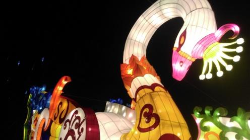 magic_lantern_festival16