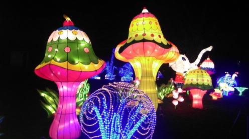 magic_lantern_festival2
