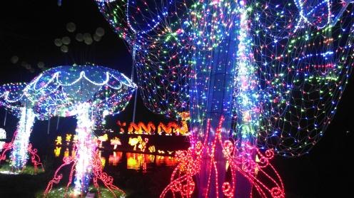 magic_lantern_festival24