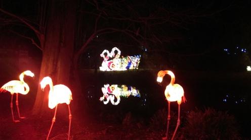 magic_lantern_festival9