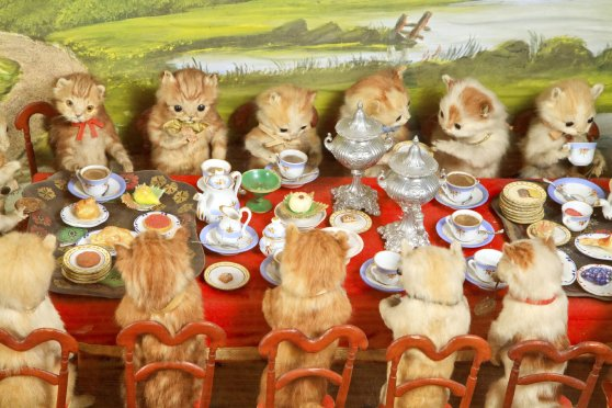 walter_potter_taxidermy_kitten_party