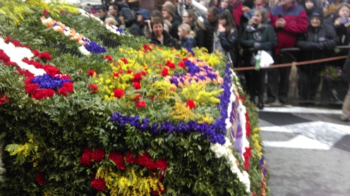 battle_of_the_violets2