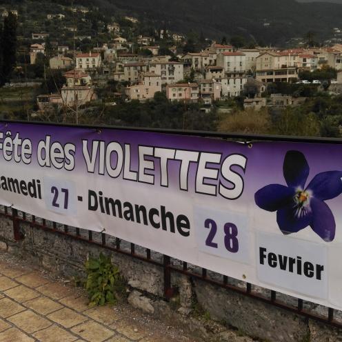 fete_des_violettes4
