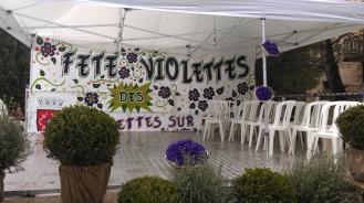 fete_des_violettes6