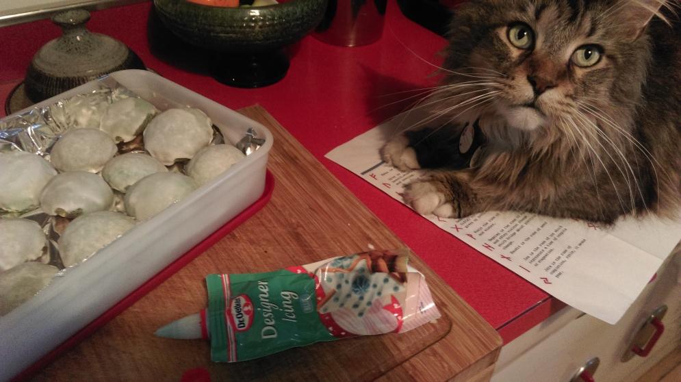 cat_helps_ice_cookies