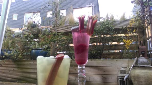 rhubarb_cocktails