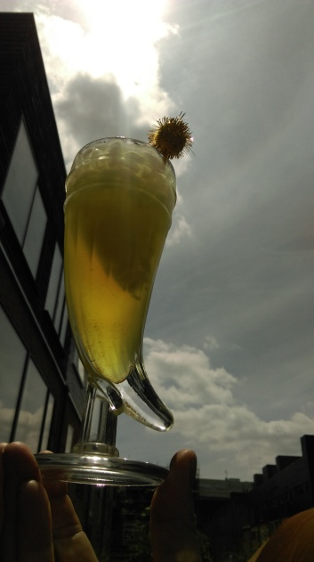 golden_cocktail_of_the_sun_pineapple