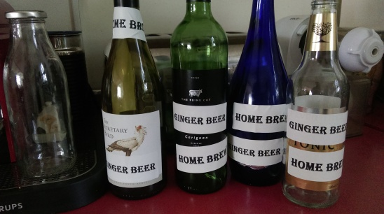 repurposed_ginger_beer_bottles