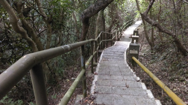 pak_a_trail2