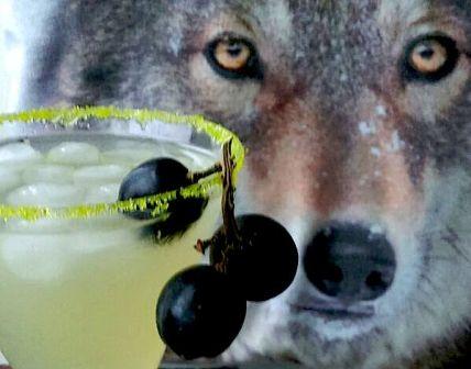 werewolf_potion_cocktail