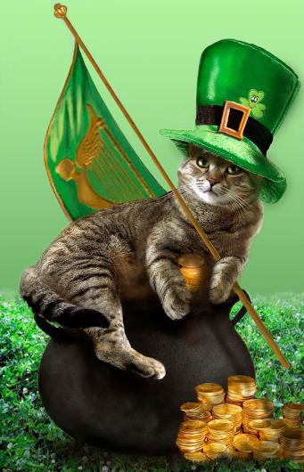 st_patricks_day_cat