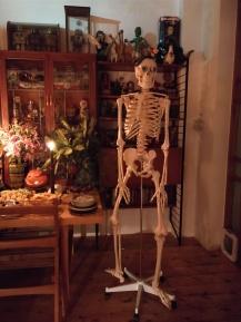 skeleton_guest