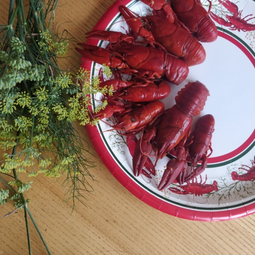 crayfish and crown dill kräftskiva