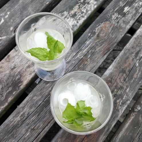 silly dilly kräftskiva cocktails 2